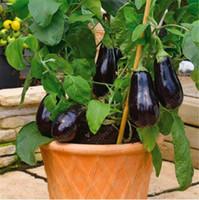 100 pc / bag 보라색 가지 씨앗, 분재 유기농 씨앗 야채, 발코니 또는 안뜰 화분 정원용 식용 씨앗