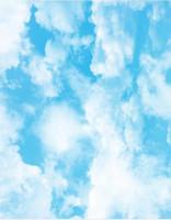 3d stereoscopico carta da parati Fantasy fresco 3d cielo blu nuvole cielo paesaggio arte zenith affresco soffitto murales carta da parati