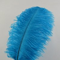Ostrich Feathers 12- 14inch(30- 35cm) for Home Wedding Decorat...