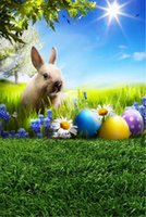 Happy Easter Rabbit Photography Backdrop Printed Blue Sky Su...