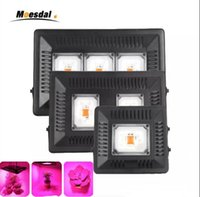 IP67 COB Led Grow Light flood lamps Full Spectrum 100W 200W ...