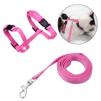 Mascota del correo del plomo halter arnés gatito cuerda de nylon de la correa del cinturón de seguridad ajustable collar de perro del gato suave y fácil de caminar