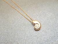 Улитка оболочка кулон ожерелье спираль морской океан дно пляж ископаемое раковина рептилия девушка девушка счастливчик женщина мать мужская семейные подарки ювелирные изделия