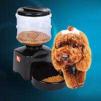 Alimentatore automatico per animali domestici in plastica da 5.5L con registratore vocale e schermo LCD Ampio dispenser per gatti con cibo per cani intelligente DHL spedizione gratuita