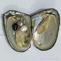 Oval Oyster Pearl 7-10mm Nowy Biały Różowy Purpurowy Czarny Świeżej Wody Naturalne Okrągły Prezent DIY Pearl Luźne Dekoracje Próżniowe Opakowanie Hurtownie