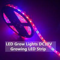 LED-Anlage wachsen Lichter 5050 LED-Streifen DC12V Rot Blau 3: 1, 4: 1, 5: 1 für die Gewächshaus-Wasserkulturanlage, die IP20 IP65-Wachstumslicht wächst