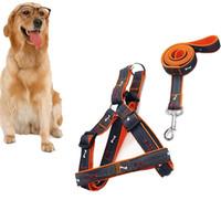 Alta qualità Prezzo a buon mercato Pet Supplies Dog Cat Guinzagli di cablaggio Set Bones Patterns Jeans Cloth Fashion Pet Dog Harnes Dog Leashes
