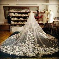 3D Floral 3M Cathedral Länge Langweiß Elfenbein Beige Champagner Braut Hochzeitsschleier mit Kamm Tüll und Spitze Appliques 2019 Neue billige heiße