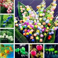 بيع 120 قطع بذور زنبق الوادي زهرة ، جرس السحلية ، رائحة الغنية ، بونساي شرفة زهرة للمنزل زرع diy بوعاء النباتات