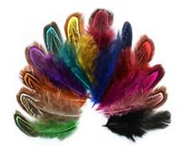 100pcs 6-10cm Feasty Feather Tails Tails Piume Fan per l'abbigliamento per cucire artigianale Decorazione della casa della festa di nozze