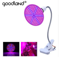 Phyto Lamp Full Spectrum LED Grow Light E27 Lámpara de planta con clip para invernadero Hydroponic Vegetable Flower Fitolampy
