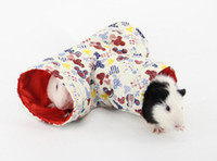 Pet products factory, Dutch pig, spring and autumn hedgehog ...