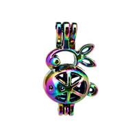 10 pz / lotto Arcobaleno Colore Coniglio Perla Gabbia Perle Cage Locket Pendant Diffusore Profumo Aromaterapia Oli Essenziali Diffusore Floating Pom