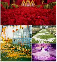 2019 эмуляция лепестков роз. Свадебное оформление комнаты / сцены. Брачные товары оптом. Цвет разнообразен.