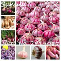 100 piezas Semillas de ajo Semillas de hortalizas orgánicas, condimentos de cocina Bonsai de alimentos, planta vegetal tiene propiedades para combatir el cáncer