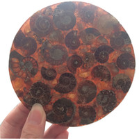 DingSheng Brown Ammonite Fossil Slice Coaster Natural Jadify...
