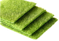 جديد مايكرو المشهد الديكور diy البسيطة الجنية حديقة النباتات محاكاة الاصطناعي وهمية الطحلب الديكور العشب العشب الأخضر