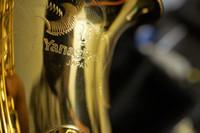 Янагисава A901 профессиональный художник ограниченным тиражом профессиональный альт-саксофон Япония серийный # с чехлом, мундштук, перчатки, камыша, ремни