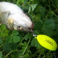 Noeby 3pcs 28mm 2g Trucha Señuelos Crankbait de agua dulce luz de la pesca dura Pesca Señuelos Pike Wobbler de la pesca de la carpa Minnow