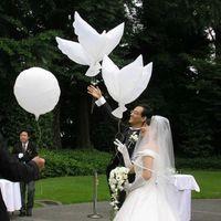 Eko Uçan Beyaz Güvercin Balonlar Helyum Güvercin Düğün Dekorasyon Globos Barış Kuş Hava Topu Parti Malzemeleri Fotoğraf Sahne