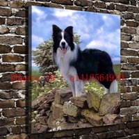 Border Collie - Le Berger-Allemand, stampe su tela Wall Art Oil Painting Home Decor 18x24 12x16 (senza cornice / con cornice)