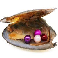 Wholesale AAAA 6- 7mm round triangle 4 pearl in oysters fresh...