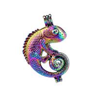10 pz / lotto Arcobaleno Colore Lucertola Chameleon Perle Perline Gabbia Locket Pendant Diffusore Aromaterapia Profumo Oli Essenziali Diffusore Floating Pom