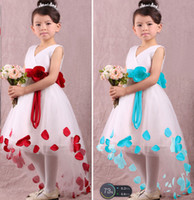 Baby Girl Dresses Kids Floral Printing Skirt Children Bow Sl...