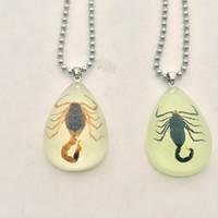 Mode Schwarz Braun Nachahmung Bernstein Echte Skorpion Schmuck Anhänger Halsketten Für Männer frauen Liebe geschenke (leuchtet im dunkeln)