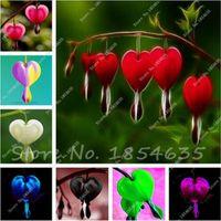 50 حبة زنبق الوادي ، بذور زهرة الأوركيد ، رائحة غنية ، بونساي زهرة رهيزومي ، نبات داخلي يشبه حب القلب