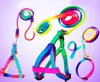 Coloré arc-en-ciel chien chien collier harnais laisse harnais de marche souple plomb coloré et durable corde nylon de traction 120cm c756
