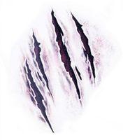 Новые Приходят Хэллоуин Зомби Шрамы Татуировки С Поддельными Парши Крови Специальный Костюм Макияж