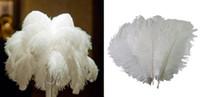 """نوعية جديدة النتوءات الطبيعية """"12-14"""" بوصة اللون الأبيض"""