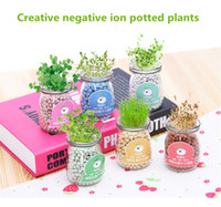 Creative DIY negative ions hydroponic potted self germinatio...