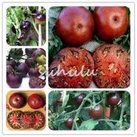 200 pcs / sac de graines de tomates, graines de tomates cerises rouges noires, graines de légumes fruits biologiques sains, bonsaï plante en pot pour jardin à la maison