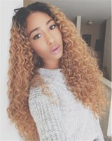 Z&F Natural Look Ombre Long Deep Wave Wigs Curly Kinky Synth...