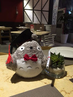 Stuffed Animals 1pcs 20cm Plush Doctor Dr . Totoro Learn Read...