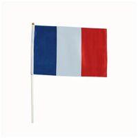 5,5 * 8,2 дюйма Франция Рука размахивает Флаг 14 * 21 см Флаг баннер 68D Полюс 100 шт. / Лот