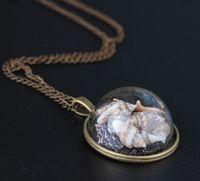 Heiß ! 2019 Fashion Strand Wind Shell Conch Stern Halskette Glas Moonlight Edelstein Ozean Element-Halskette für Frauen-Schmucksachen Accessorie