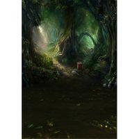 Сказка лес Фото фон печатных старые деревья весенние цветы дети дети фотографии фоны для студии