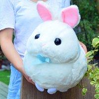 Güzel Yumuşak Hayvan Bunny Peluş Bebek Büyük Dolması Karikatür Tavşan Oyuncak Hayvanlar Yastık Çocuklar Hediye Dekorasyon 17 inç 42 cm DY50054