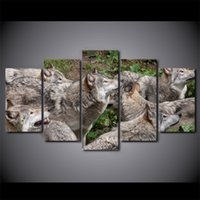 HD Printed 5 Piece Canvas Art Wild Brown Wolf Group Painting...