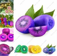 홈 가든 과일 키위 씨앗, 달콤한 즙이 많은 식물 다채로운 키위 씨앗, 가보 나무 분재 나무 쉽게 성장 100 개 무료 배송