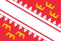 Bandiera della Francia di Alsace 3ft x 5ft poliestere Banner Flying 150 * 90cm Bandiera personalizzata esterna