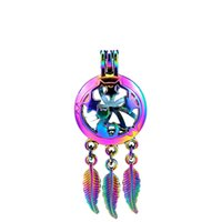 C764 5 unids / lote Rainbow Color Beaty Dream Catcher Star Cat Leaf Jaula Colgante de la Perla Locket de Fiesta de Cuento de Hadas