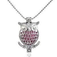 Silver Big Eye Beauty Owl Cute Hollow Difusor Locket Mujeres Aromatherapy Beads Perla Jaula Collar Colgante-Boutique regalo