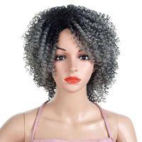 Afrikanische kleine Perücke Spitze-Front-Perücke Curly Welle African American Perücken Wärme Resisatnt Haar synthetische Perücken für Frauen