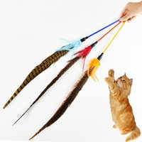 Feather Teaser Cat Toy Wand For Kitten Kitty Interactive Wit...
