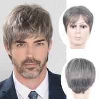 Fanté Cheveux Short Argent Gris Synthétique Cheveux Synthétiques Perruques Mens Homme Flaides Perruques réalistes