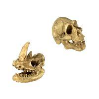 Conjunto de 2, reptil Vivarium Decoración Rhino cráneo humano Ocultar cueva Nido acuario submarino ornamento